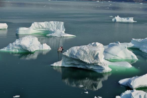 3 DD amongst the icebergs Uummannaq. Photo Ben Ditto, my camera - Copy - Copy